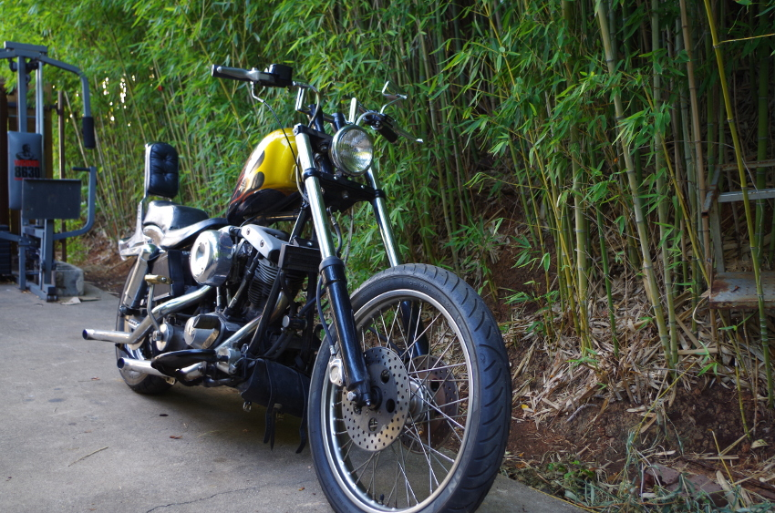 76 FXE for sale