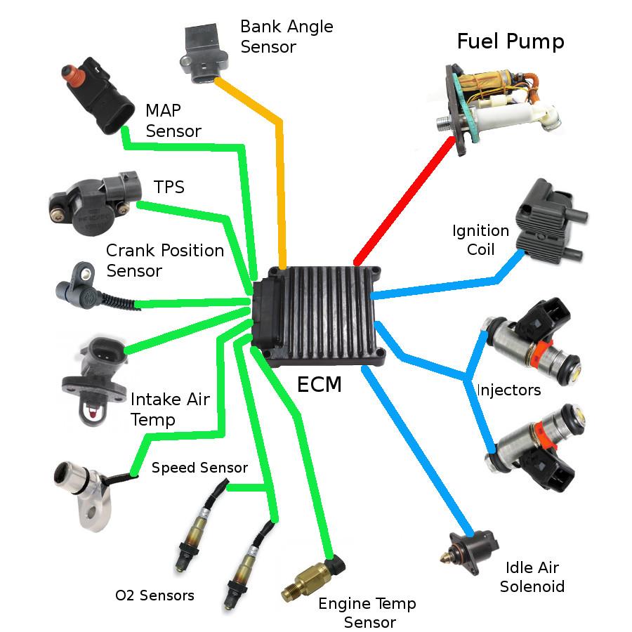 harley-davidson fuel injection diagram